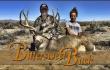 Bittersweet Buck