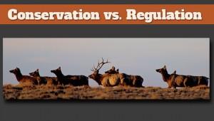 newsletter 7 15 conservation vs regulation (1)