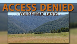 newsletter 3 16 access denied