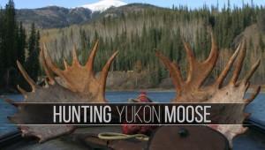 2003_Yukon_Moose_MikeE_R_Thumbnail