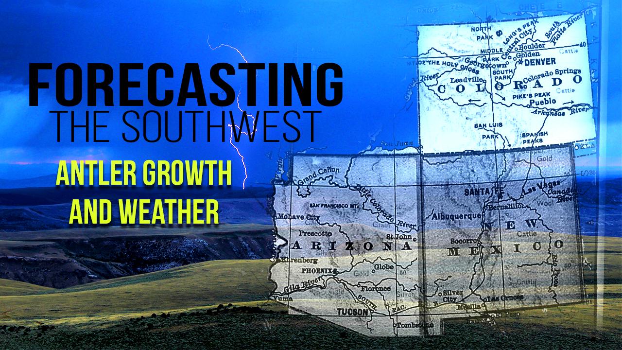 ForecastingSW