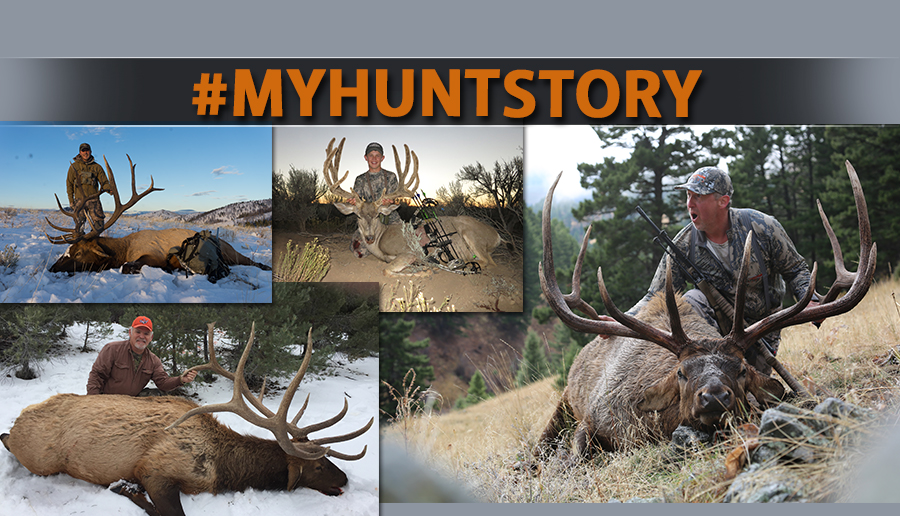 newsletter 5 16 my hunt story