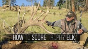 HowTo_Score_Elk_Thumbnail