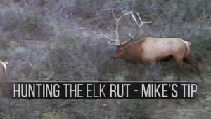 hunting_4thphase_elkrut_tip_thumbnail