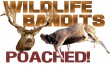 wildlife-bandits-poached2-copy