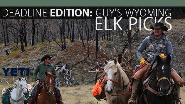 Wyoming Elk Picks