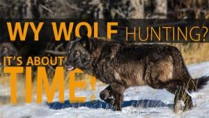 2017 Wy Wolf Hunting 3 17 blog