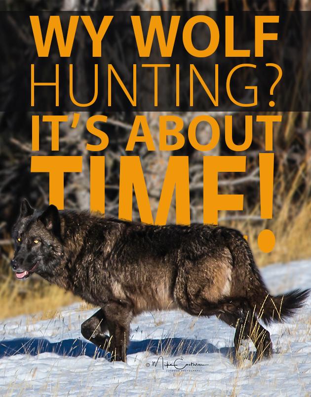 2017 Wy Wolf Hunting 3 17