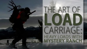 2017 art of load 4 17 (1)