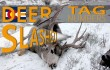 2017 deer tag 4 17 blog