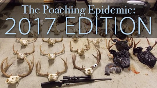 2017 poaching edition 5 17-2