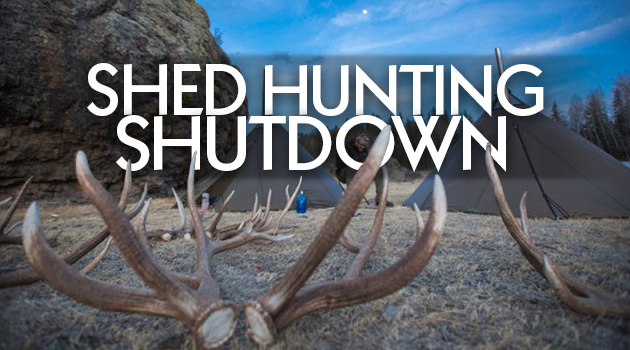 Shed Hunting Shutdown Well Not Really But Kind Of