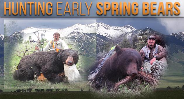 SpringBearsBrianBarneyBlogArt