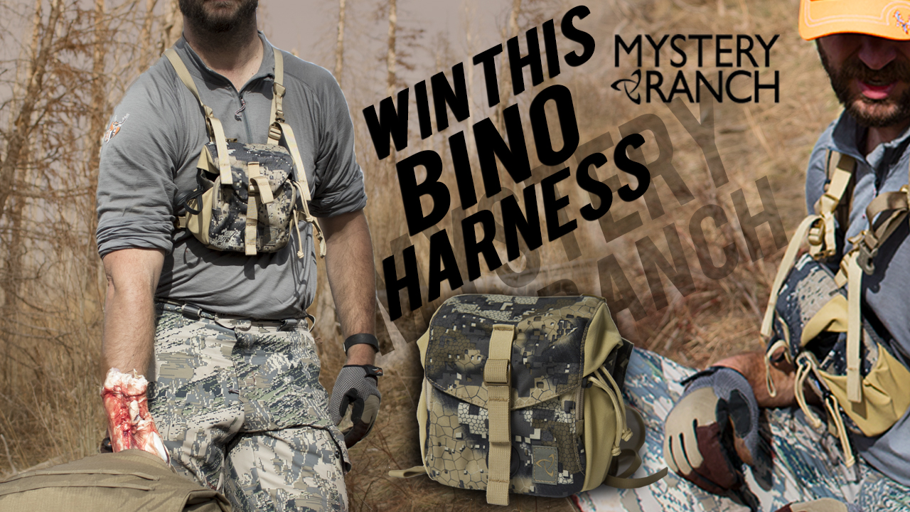mr-bino-harness-4