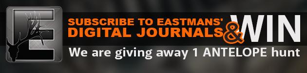 E-NEWS MARKETING DIGITAL 2 17