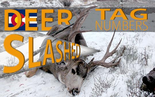 Colorado deer tag 4 17 blog