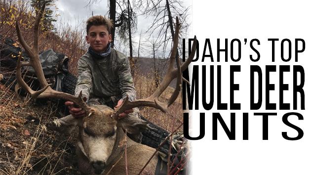 idaho s best mule deer units eastmans official blog mule deer