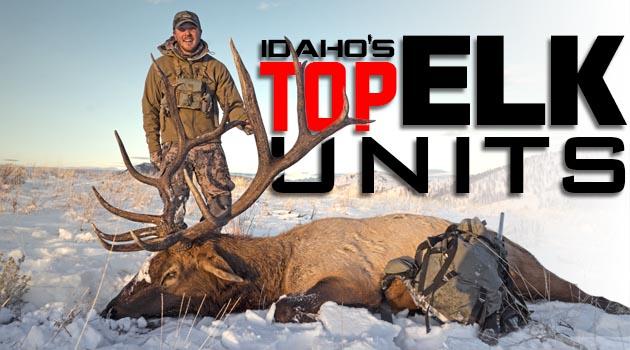 Idaho's Top Elk Units – 2019 Edition!