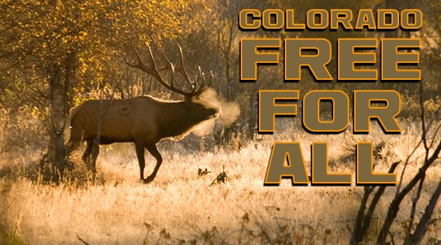 E-NEWS_BLOG_ColoradoFree-for-All