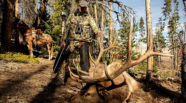 hunting websites