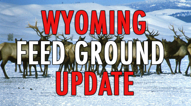 Wyoming Feedgrounds Public Comment Period Until January 8, 2021