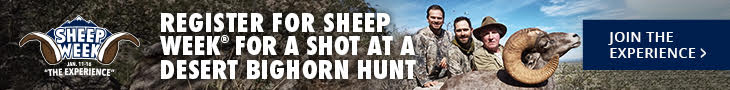 Booking a Dall's Sheep Hunt – 5-Things To Know Before You Go